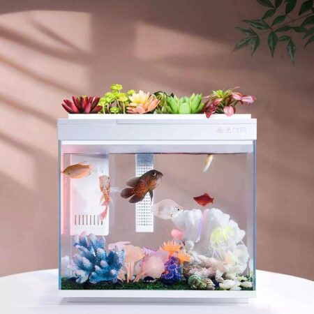 Đánh giá bể cá thông minh Xiaomi HF-JHYG006